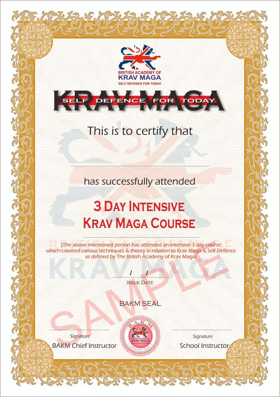3 Day Intensive Krav Maga Self Defence Course Bakm Krav Maga
